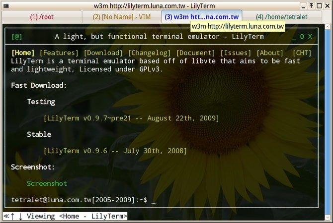 lilyterm_terminal