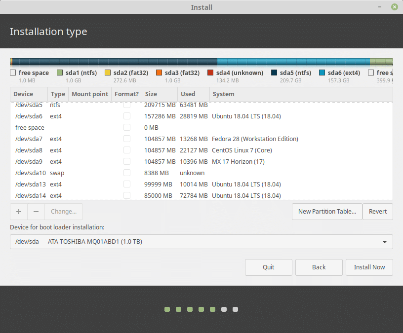 Linux Mint Partition Setup During Installation
