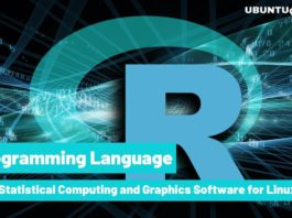 A Statistical Computing and Graphics Software for Linux