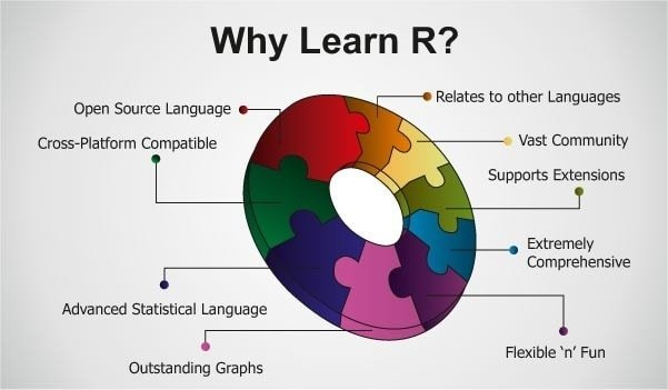 Why Learn R Programming Language