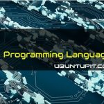 Best Blockchain Programming Language
