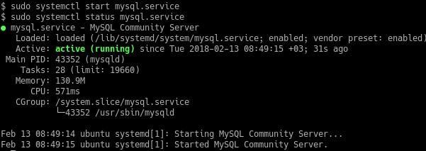 Testing the MySQL Installation