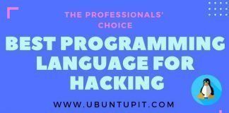 Best Programming Language for Hacking
