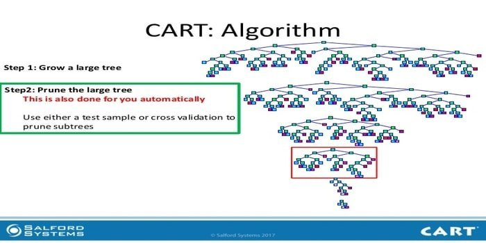 Top 20 Machine Learning Algorithms For Both Newbies and