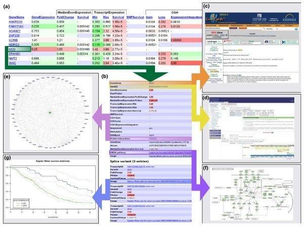 anduril bioinformatics tool