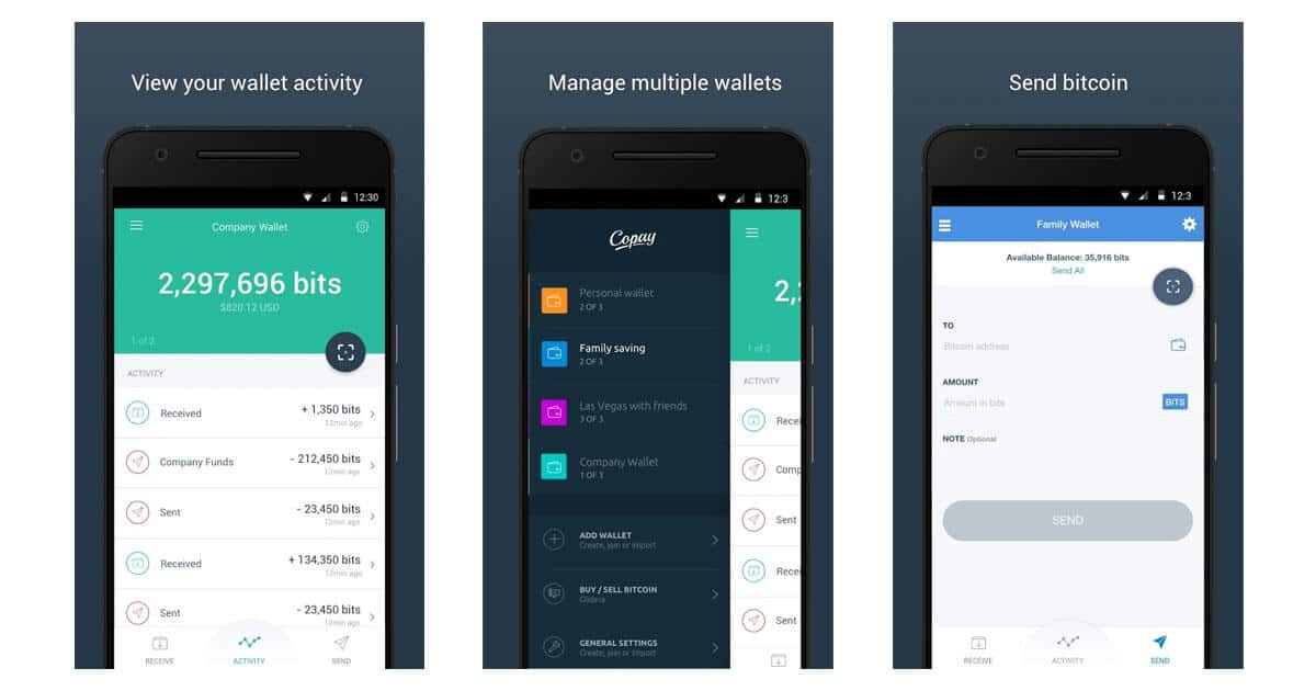Copay best cryptocurrency wallet