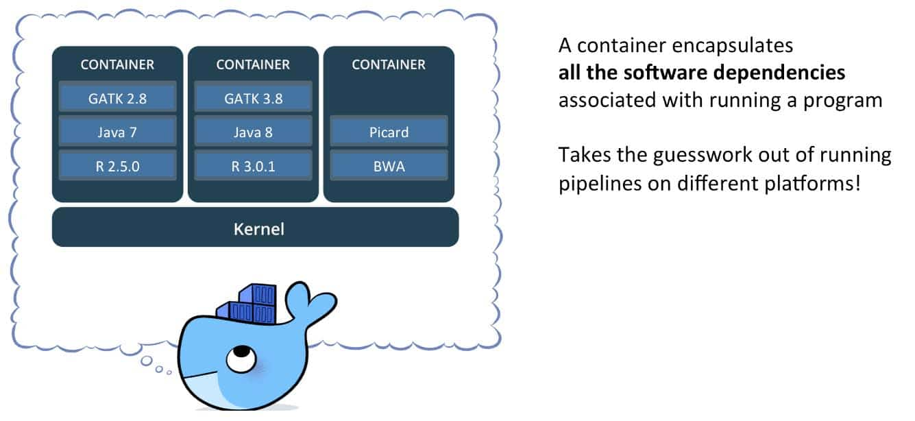 An instruction of docker container on right and details shown in box on left; white background