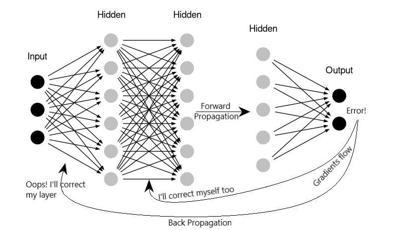 variants of Back Propagation