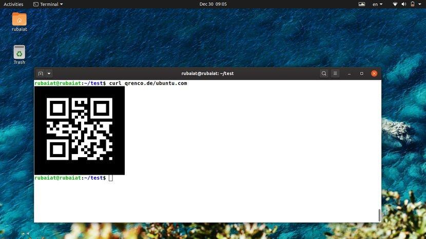 QR code using CURL