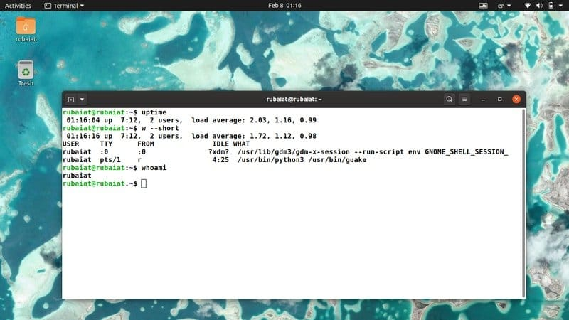 basic Linux server commands