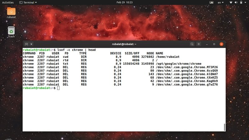 process name parameter for lsof Linux