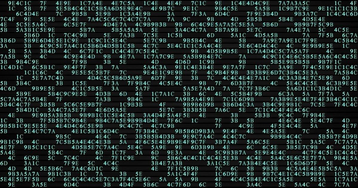 a set of machine code in a black screen