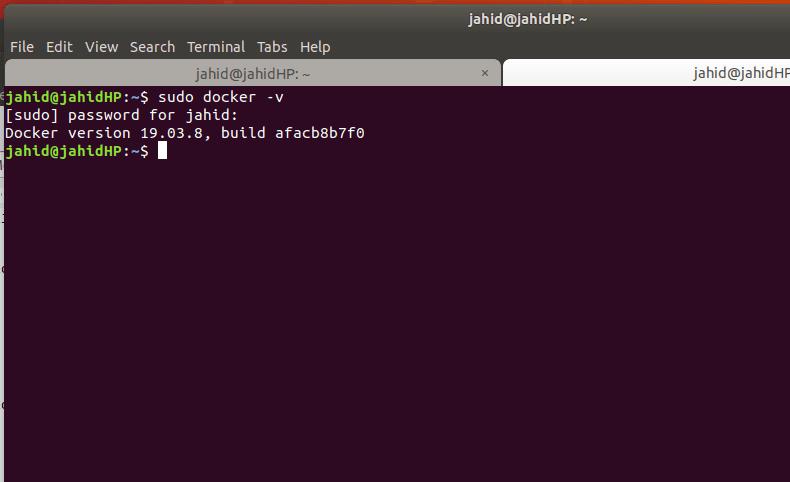 sudo docker version linux