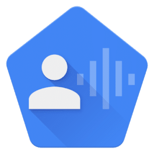 Voice Access, best apps for Google Home