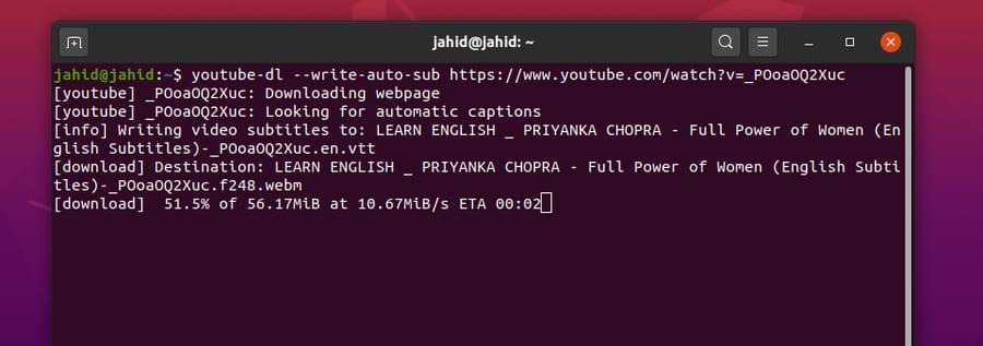 YouTube-DL on Linux subtitle