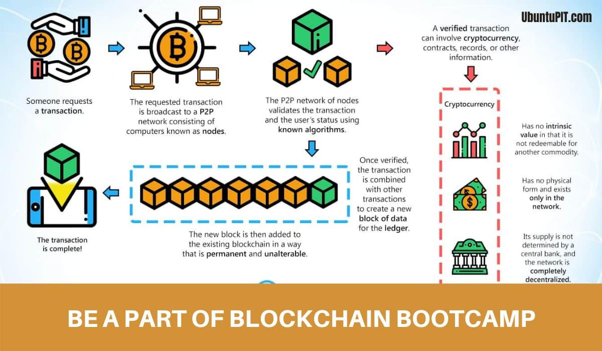 Blockchain Courses for Expert Skills