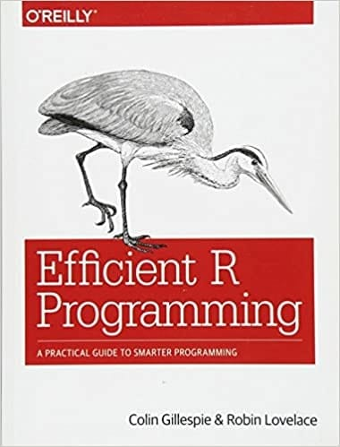 Efficient R Programming - A Practical Guide to Smarter Programming