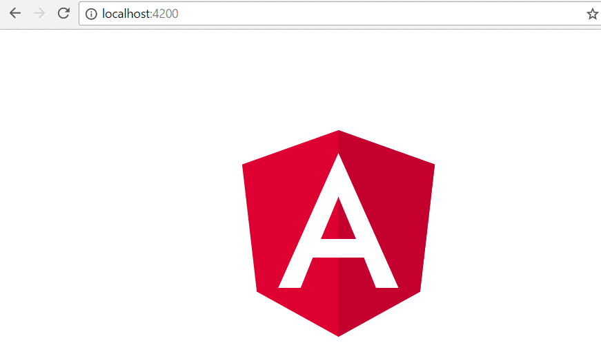 angular webpage on chrome