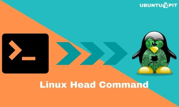Everyday Examples of the Linux Head command
