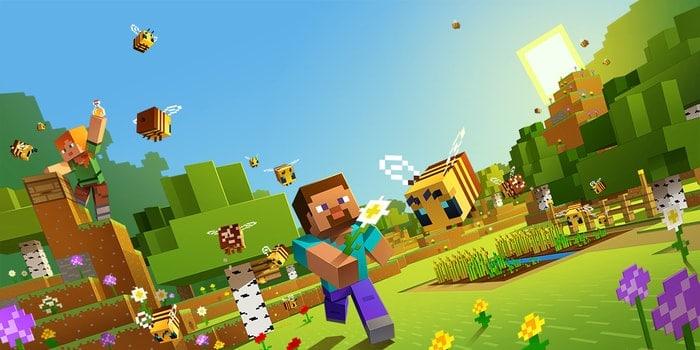 minecraft - Microsoft games for Windows