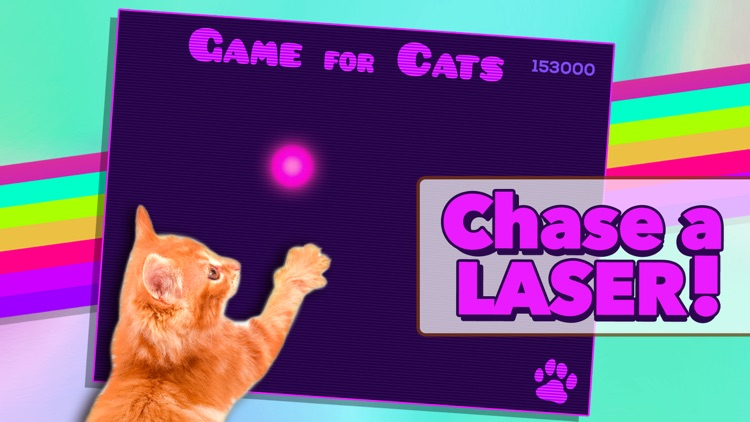 Game for Cat