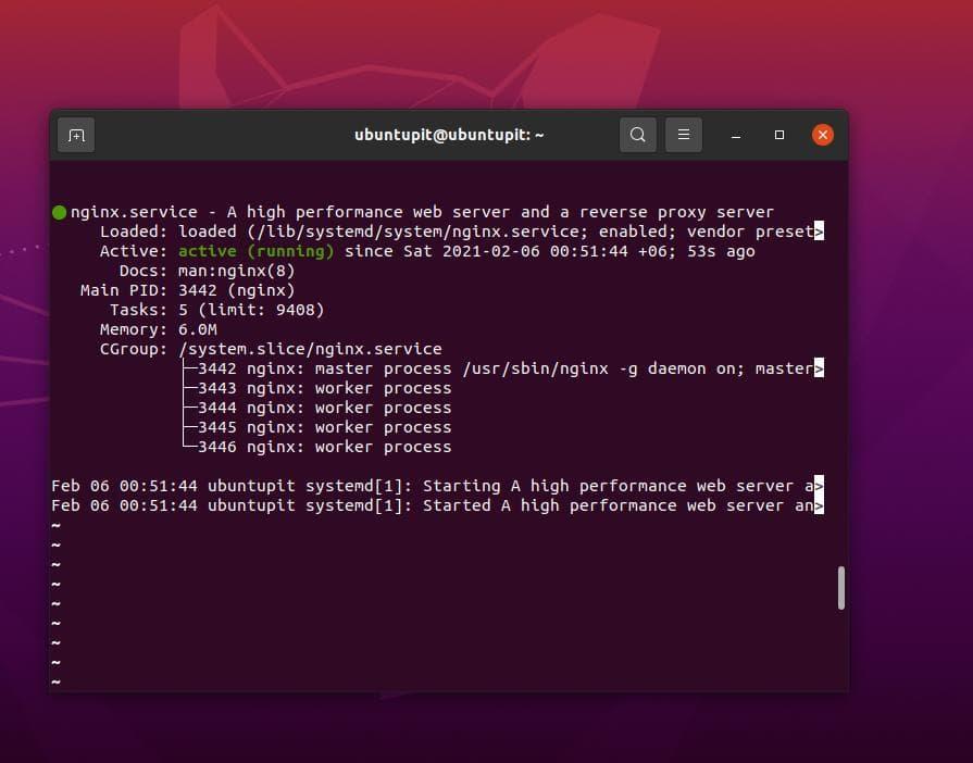 Nginx server status