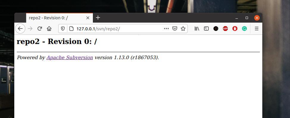 Apache SVN Server On Linux