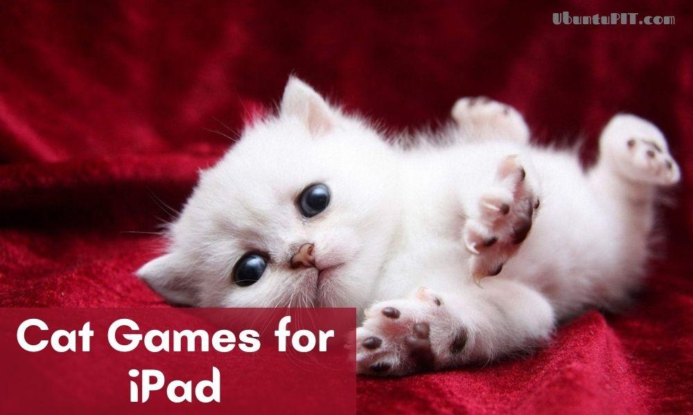Best Cat Games for iPad
