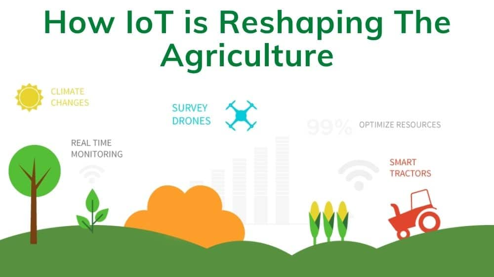 IoT in Agriculture.jpg