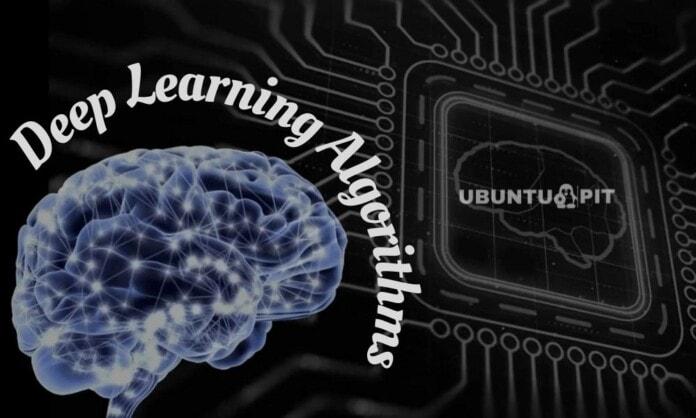 Top Deep Learning Algorithms