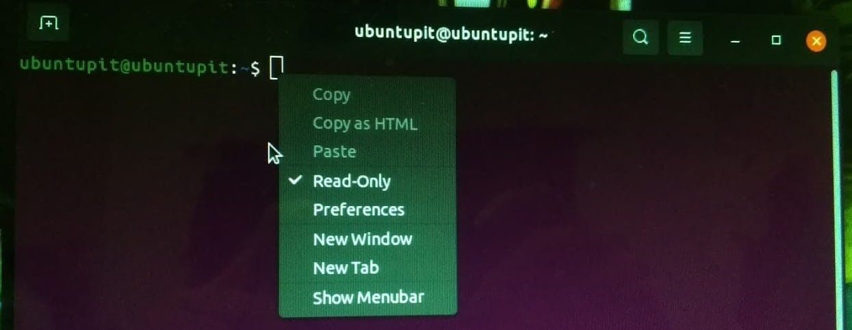 set read only mode in Terminal Linux