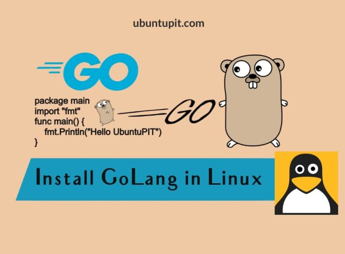 Install GoLang on Linux