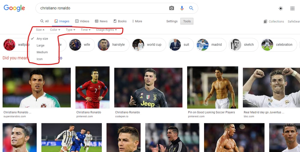 search images by google