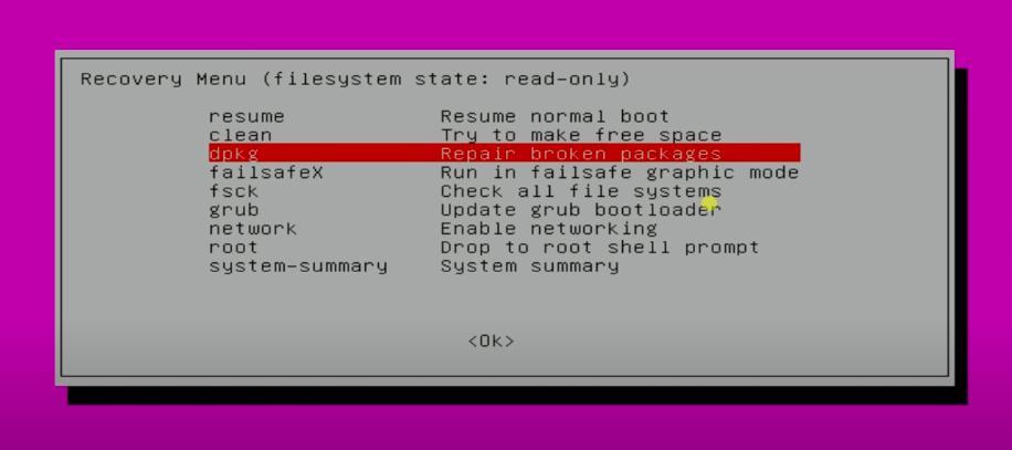 repair brpken packages from recovery mode on ubuntu