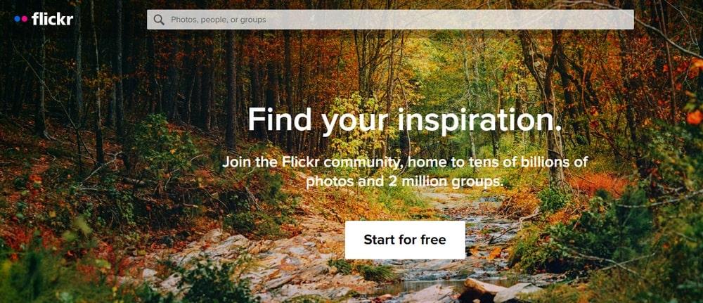 Flickr _ Google Photos Alternative